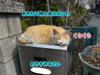 葉っぱ22.jpg